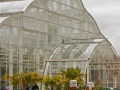 Buildings - Greenhouse2