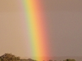 Clouds- Rainbow
